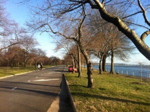 Speed Intervals around Hains Point